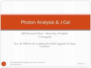 Photon Analysis  & J-Cal