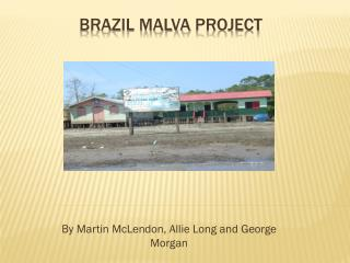 Brazil  Malva  Project