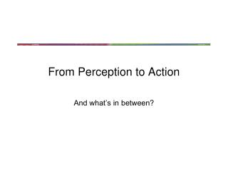 From Perception to Action