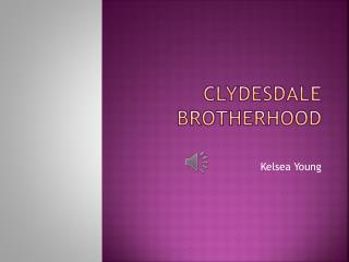 Clydesdale Brotherhood