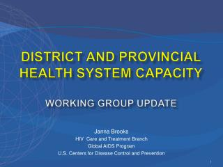 District and provincial health system capacity  Working Group Update