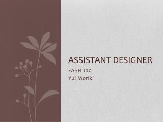 Assistant Designer