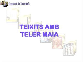 TEIXITS AMB TELER MAIA