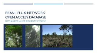 Brasil  flux network  open access database