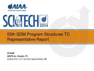 55th SDM Program  Structures  TC  Representative Report
