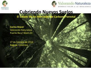 Cubriendo Nuevos Suelos El Estado de los Mercados de Carbono Forestal