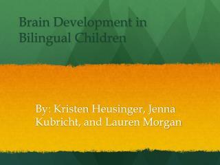Brain Development in Bilingual Children