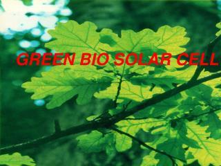 GREEN BIO SOLAR CELL