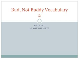 Bud, Not Buddy Vocabulary 2