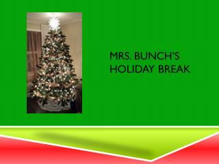 MRs.  Bunch�s Holiday Break
