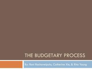 The Budgetary Process