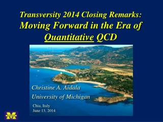Transversity 2014 Closing Remarks:  Moving Forward in the Era of  Quantitative  QCD