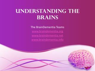 Understanding the Brains