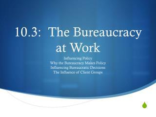 10.3:  The Bureaucracy at Work