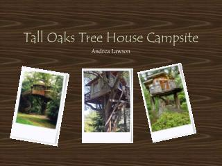 Tall Oaks Tree House Campsite