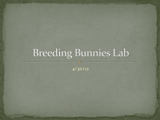 Breeding Bunnies Lab