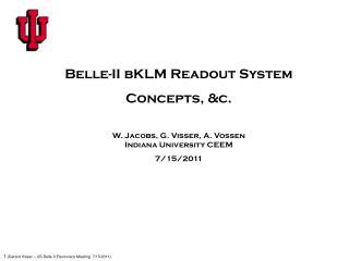 Belle-II  bKLM  Readout System Concepts, &c.