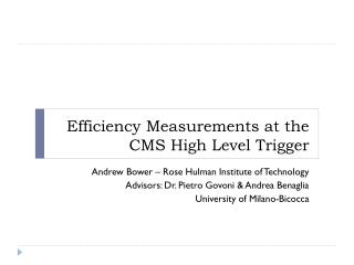 Efficiency Measurements at the CMS High Level Trigger