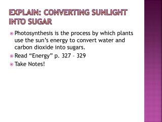 Explain: Converting Sunlight into Sugar