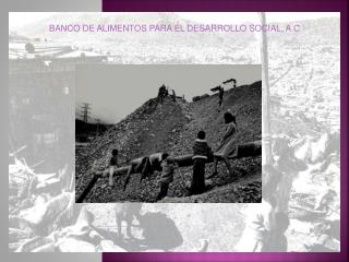 BANCO DE ALIMENTOS PARA EL DESARROLLO SOCIAL, A.C.