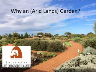 Why an (Arid Lands) Garden?
