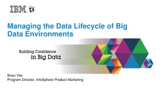 Managing the Data Lifecycle of Big Data Environments