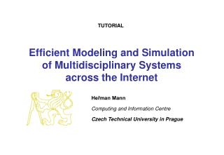 Efficient Modeling and Simulation  of Multidisciplinary Systems across the Internet
