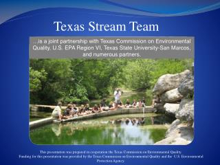 Texas Stream Team