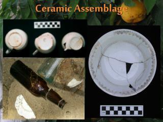 Ceramic Assemblage