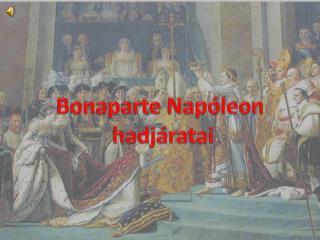 Bonaparte Napóleon  hadjáratai