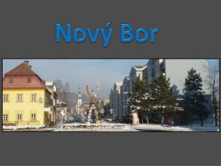 Nov� Bor