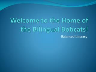 Welcome to the Home of the Bilingual Bobcats!