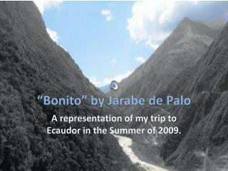 """""""Bonito"""" by  Jarabe  de Palo"""