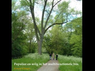 Populier en wilg in het multifunctionele bos Simon Klingen