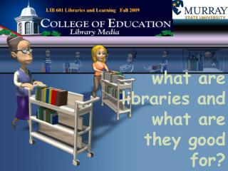 what are libraries and what are they good for?