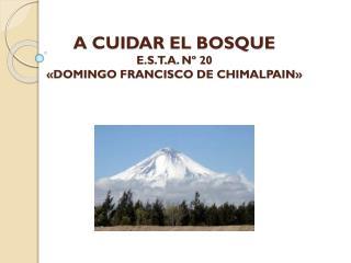 A CUIDAR EL BOSQUE E.S.T.A. Nº 20 «DOMINGO FRANCISCO DE CHIMALPAIN»