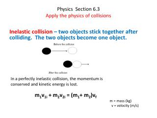 Physics  Section 6.3 Apply the physics of collisions