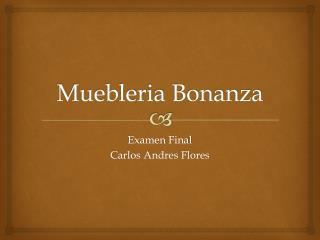 Muebleria  Bonanza