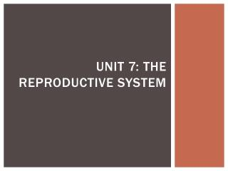 Unit 7: The Reproductive System