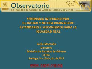 Sonia Montaño Directora División de Asuntos de Género CEPAL Santiago, 14 y 15 de julio de 2011