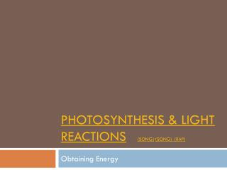 Photosynthesis & Light Reactions (song) (Song)   (Rap)
