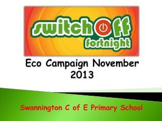 Eco Campaign November 2013