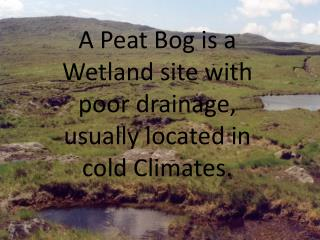 A Peat Bog is a Wetland site with poor drainage, usually located in cold Climates.