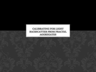 Calibrating for Light backscatter from fractal aggregates