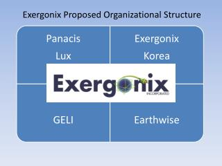 Exergonix  Proposed Organizational  Structure