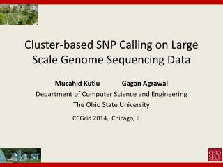 Cluster-based SNP Calling on Large Scale Genome Sequencing Data