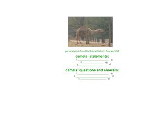 personal photo from Wild Animal Safari in Georgia, USA camels: statements: