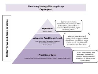 Mentoring Strategy Working Group  Organogram