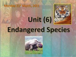 Unit (6)