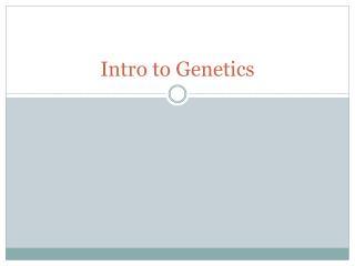 Intro to Genetics